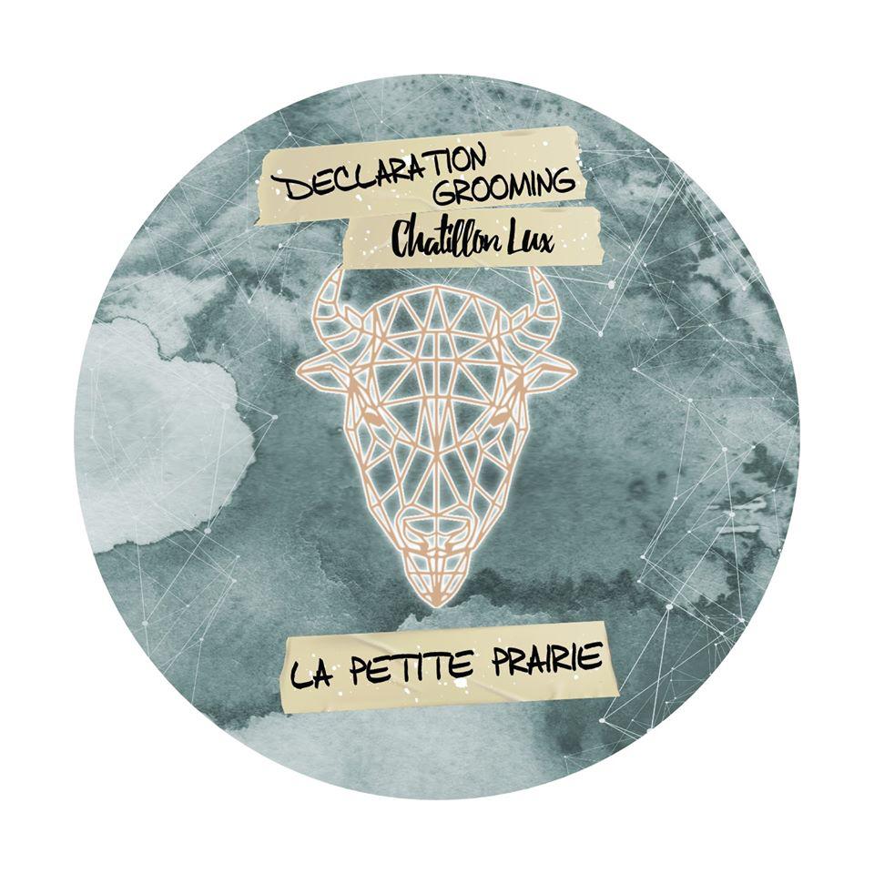 Chatillon Lux/Declaration Grooming - La Petite Prairie - Soap image