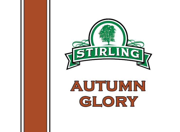 Stirling Soap Co. - Autum Glory - Eau de Toilette image